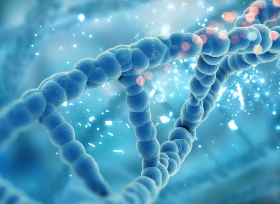 הסיפור הרגשי זורם ב DNA שלך - אלונה בן ארי